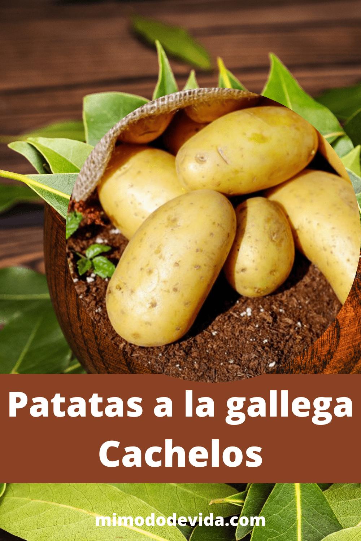 Receta Patatas gallegas, cachelos